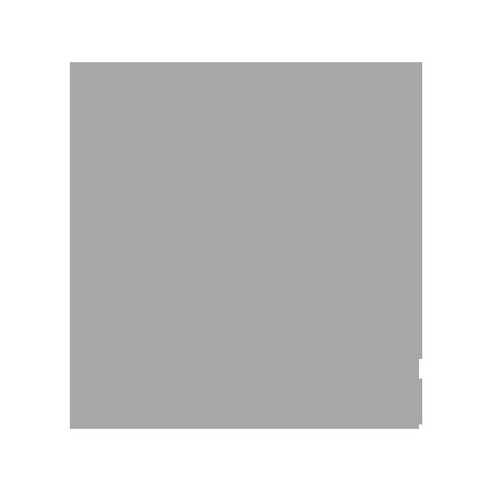 Logo -JBL