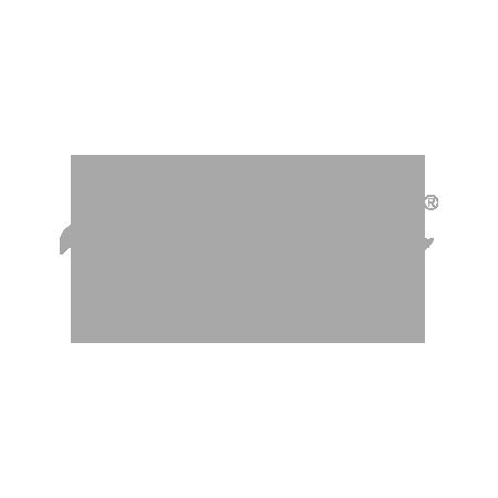Logo -RayBan
